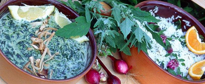 Matgleder fra hagens spisskammer