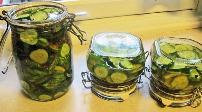 Tid for agurk og sylting