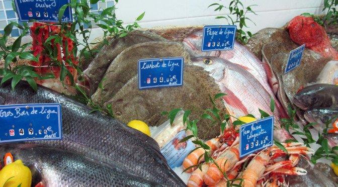 Fisk og fiske; skremmer dette deg?