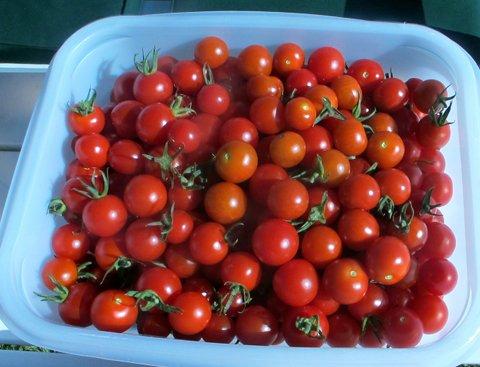 Tomat, kirsch_edited-1